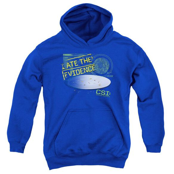 Csi I Ate The Evidence Youth Pull Over Hoodie