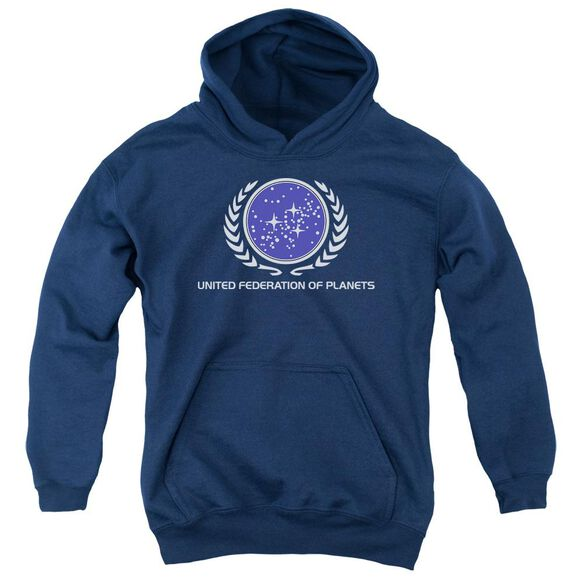 Star Trek United Federation Logo Youth Pull Over Hoodie