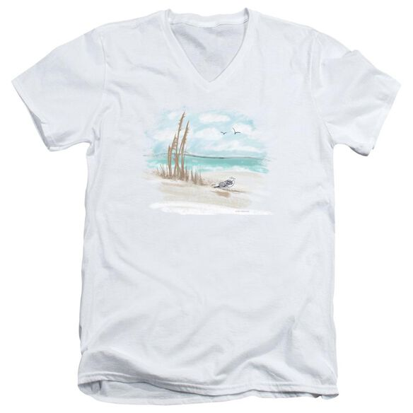 Seagulls Short Sleeve Adult V Neck T-Shirt