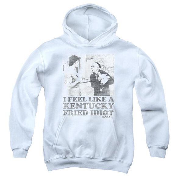 Rocky Fried Idiot Youth Pull Over Hoodie