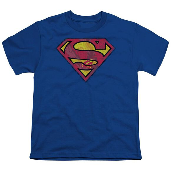 Superman Action Shield Short Sleeve Youth Royal T-Shirt
