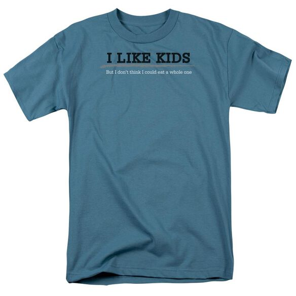 I Like Kids Short Sleeve Adult Slate T-Shirt