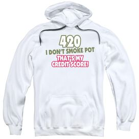 420 Credit Score Adult Pull Over Hoodie