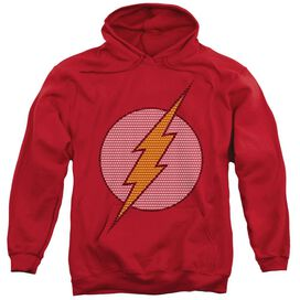 Dc Flash Little Logos Adult Pull Over Hoodie