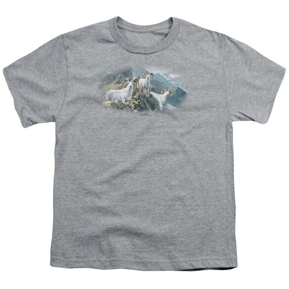Wildlife High Trails Dall Sheep Short Sleeve Youth Athletic T-Shirt