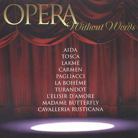 Barry Wordsworth - Opera Without Words