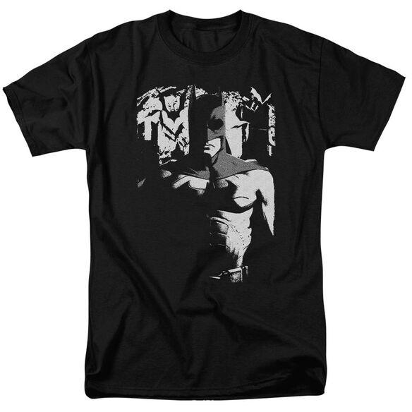 Batman Begins Birth Of Knight Short Sleeve Adult T-Shirt