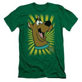 Scooby Doo™ T Shirt Hbo Short Sleeve Adult Kelly T-Shirt
