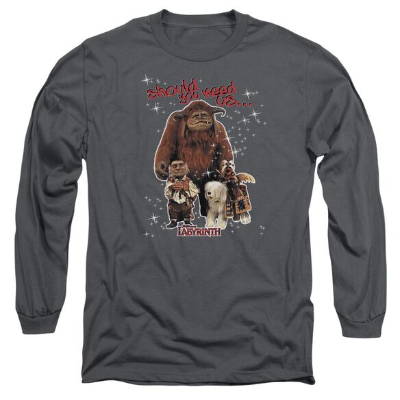 Labyrinth Should You Need Us Long Sleeve Adult T-Shirt