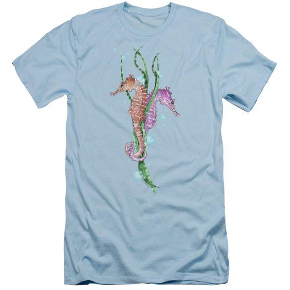 WILDLIFE SEAHORSE DANCE-S/S ADULT T-Shirt