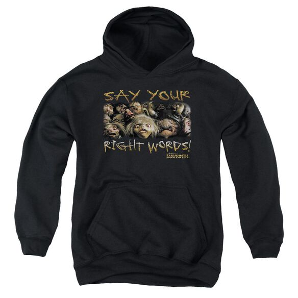 Labyrinth Say Your Right Words Youth Pull Over Hoodie