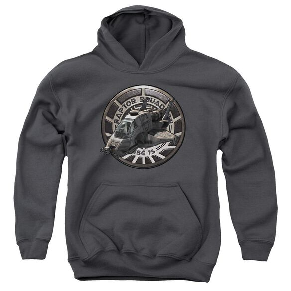 Bsg Raptor Squadron Youth Pull Over Hoodie