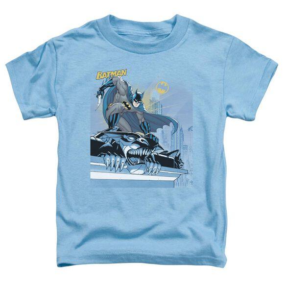 Batman Two Gotham Gargoyles Short Sleeve Toddler Tee Carolina Blue T-Shirt