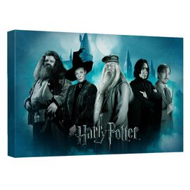 Harry Potter Hogwarts Teachers Canvas Wall Art With Back Board