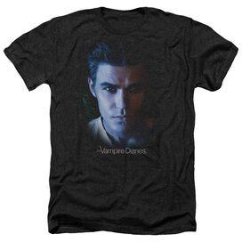 Vampire Diaries Stefan Adult Heather