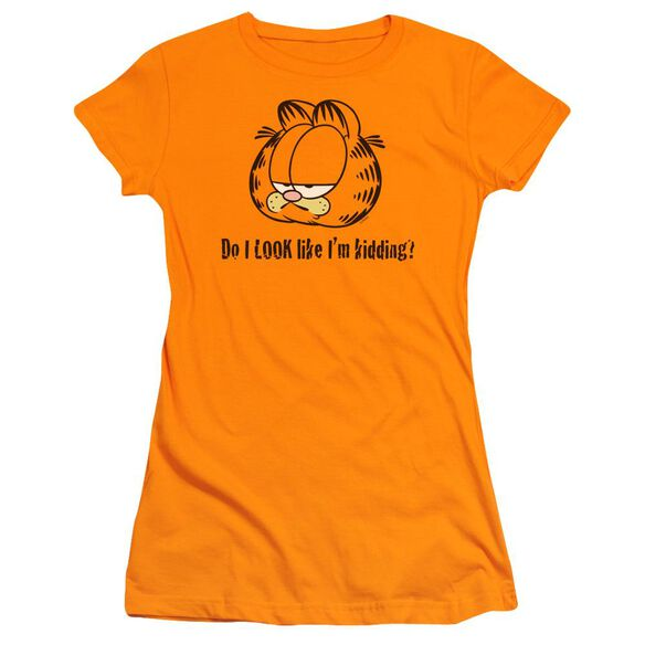 Garfield Do I Look Like Im Kidding Short Sleeve Junior Sheer T-Shirt