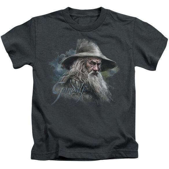 The Hobbit Gandalf The Grey Short Sleeve Juvenile Charcoal T-Shirt