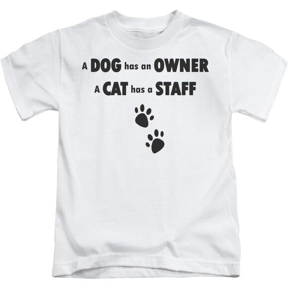 Cat Has A Staff Short Sleeve Juvenile White T-Shirt