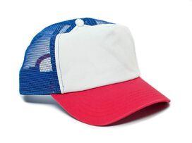 Stranger Things Dustin Trucker Hat