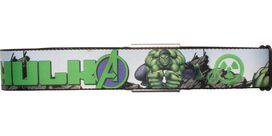 Incredible Hulk Avengers Seatbelt Mesh Belt