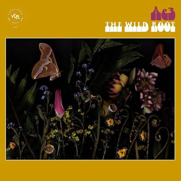 Ae3 (Alan Evans Trio) - The Wild Root