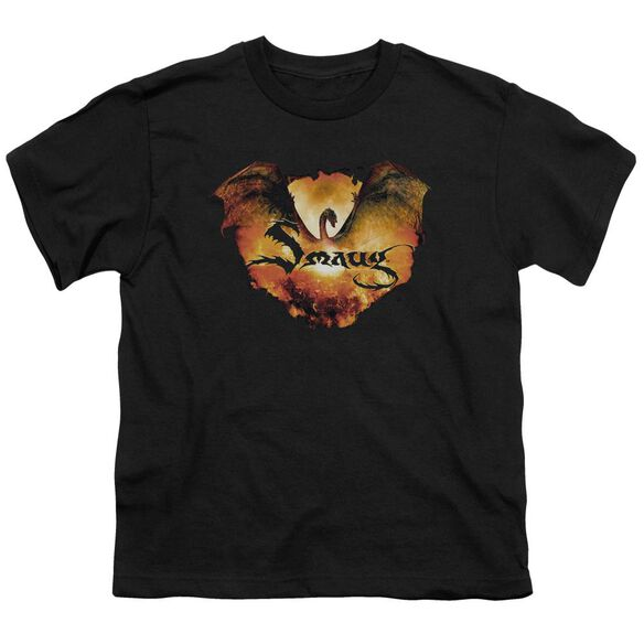 Hobbit Reign In Flame Short Sleeve Youth T-Shirt