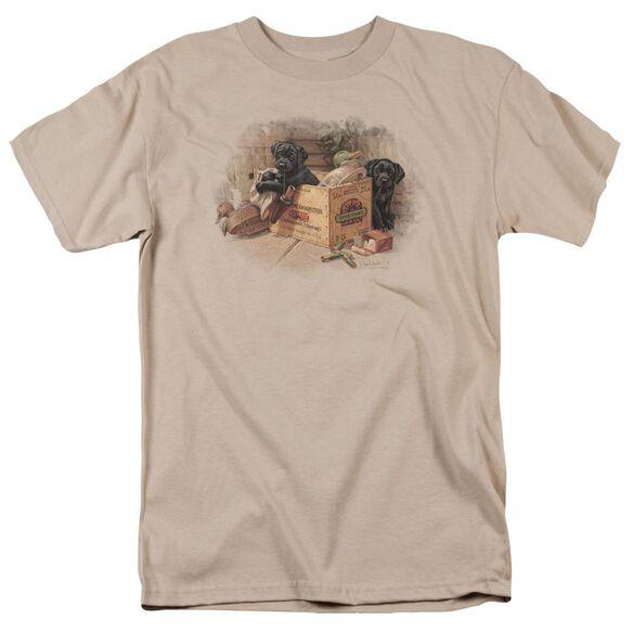 Wildlife Box Boys Black Labs Short Sleeve Adult Sand T-Shirt