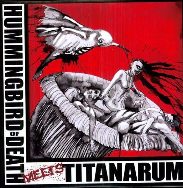 Hummingbird Of Death / Titanarum