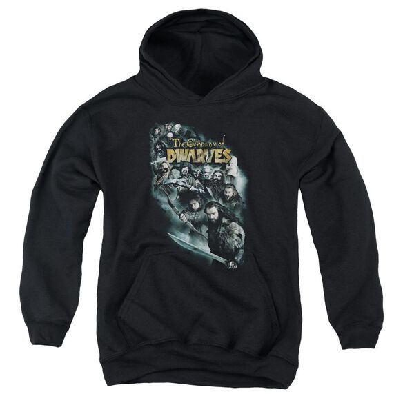 The Hobbit Company Of Dwarves Youth Pull Over Hoodie