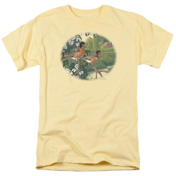 Wildlife Apple Blossom Time Robins Short Sleeve Adult Banana T-Shirt