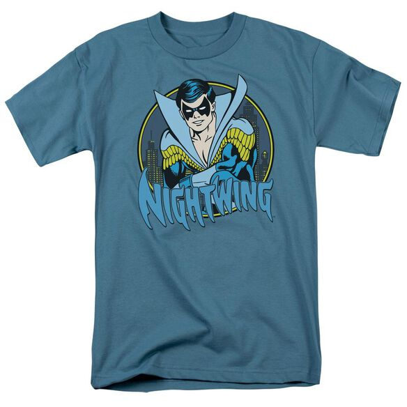 Dc Nightwing Short Sleeve Adult Slate T-Shirt