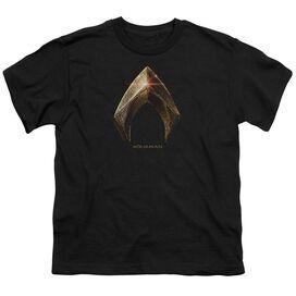 Justice League Movie Aquaman Logo Short Sleeve Youth T-Shirt