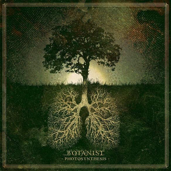 Botanist - Photosynthesis