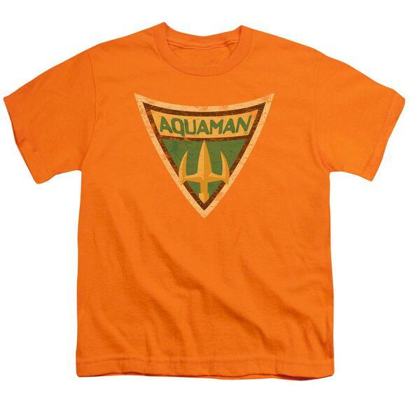 Batman Bb Aquaman Shield Short Sleeve Youth T-Shirt