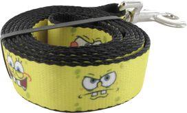 Spongebob Squarepants Faces Pet Leash