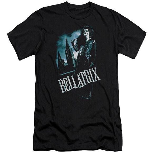 Harry Potter Bellatrix Full Body Hbo Short Sleeve Adult T-Shirt
