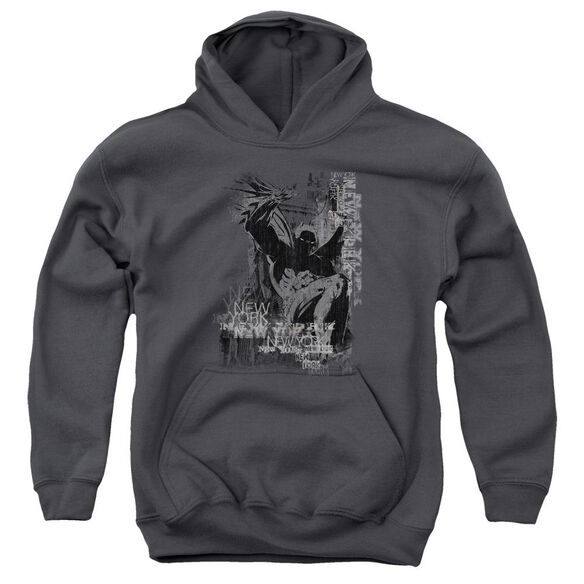 Batman The Knight Life Youth Pull Over Hoodie