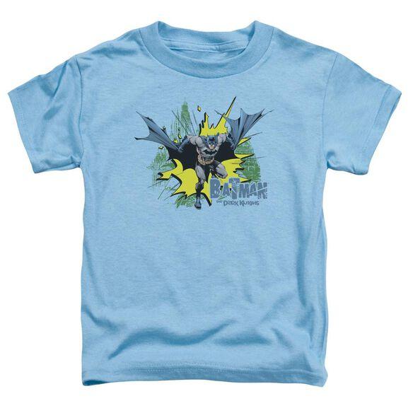 Batman City Splash Short Sleeve Toddler Tee Carolina Blue T-Shirt