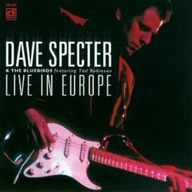 Dave Specter & Bluebirds/ - Live in Europe