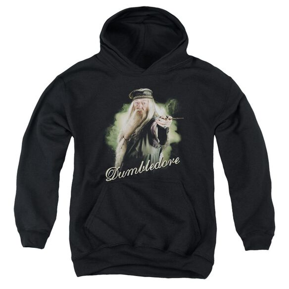 Harry Potter Dumbledore Wand Youth Pull Over Hoodie