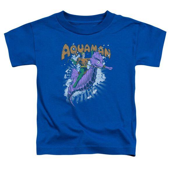 Dc Ride Free Short Sleeve Toddler Tee Royal Blue T-Shirt