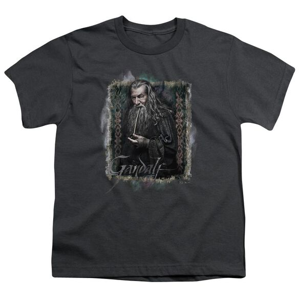 The Hobbit Gandalf Short Sleeve Youth T-Shirt