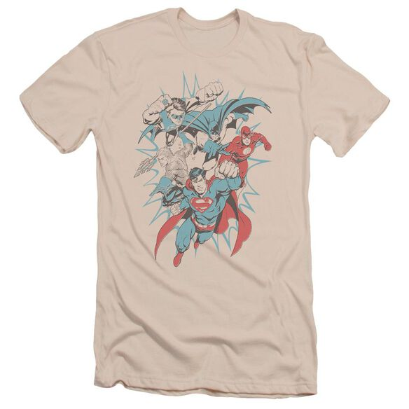 Jla Pop Group Short Sleeve Adult T-Shirt