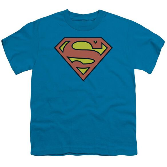 Dc Superman Logo Short Sleeve Youth T-Shirt