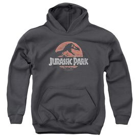 Jurassic Park Faded Logo Youth Pull Over Hoodie