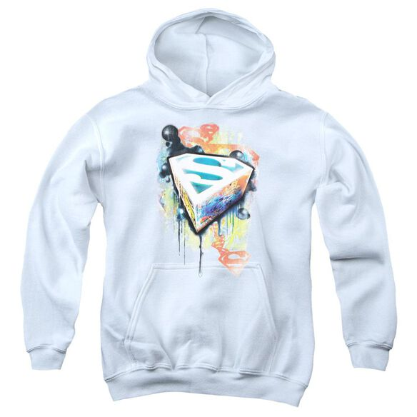 Superman Urban Shields Youth Pull Over Hoodie