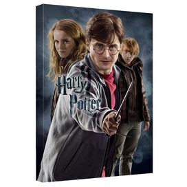 Harry Potter Seventh Year Canvas Wall Art With Back Board