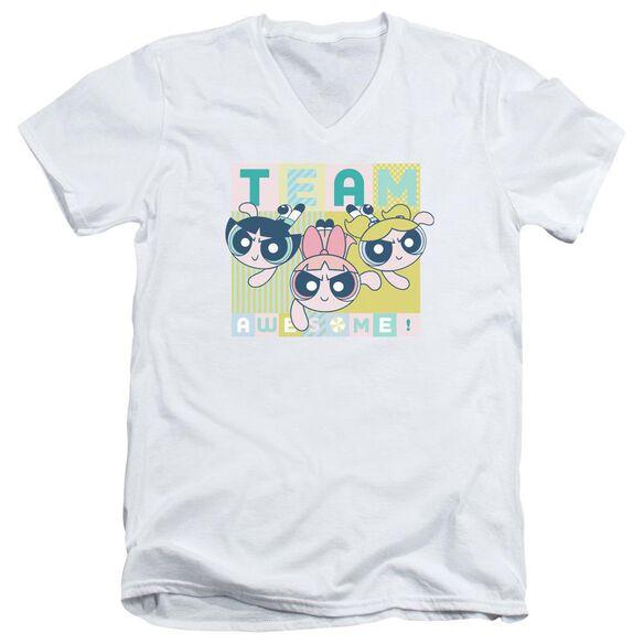 Powerpuff Girls Awesome Block Short Sleeve Adult V Neck T-Shirt