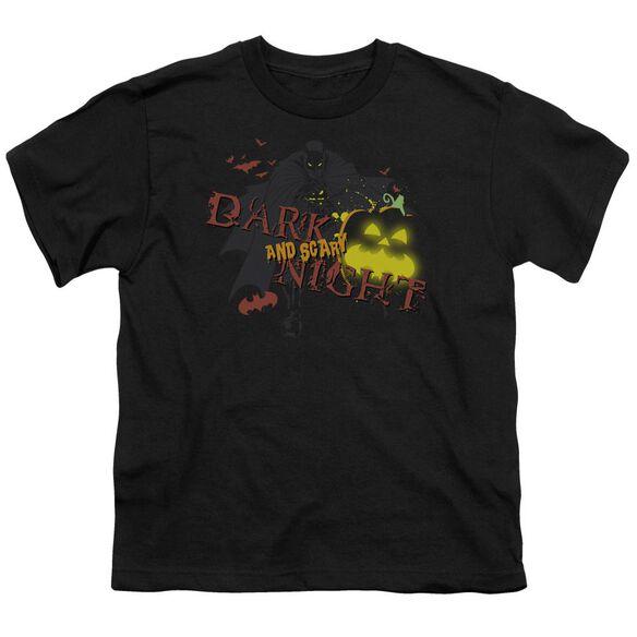Batman Dark And Scary Night Short Sleeve Youth T-Shirt