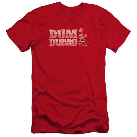Dum Dums Worlds Best-premuim Canvas Adult Slim